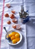 Egg yolks on a plate next to broken eggshells