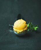 Mango sorbet ice cream scoop in ice cream scooper over black wooden background