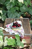Fresh cherries in a small bowl on a wooden box in a garden