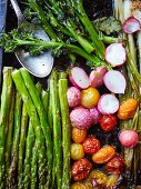Roasted vegetables, radishes, broccoli, spring onions, asparagus and tomatoes