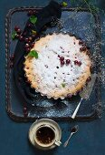 Gooseberry cake with icing sugar