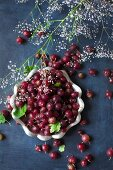 Red gooseberries in and around a metal bowl (top view)