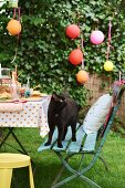 Black cat stood on garden chair next to table set for children's party