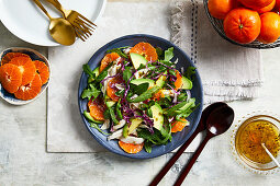 Chicken salad with avocado and mandarins