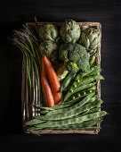 Asparagus, carrots, artichokes, broccoli, peas and broad beans in a basket