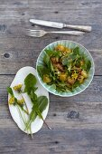 Bread salad with dandelion leaves