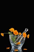 Poppies in a glass mortar