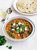Paneer and Vegetable Curry