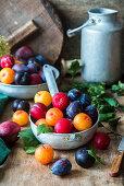 Various plums