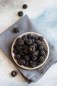 A bowl of wild blackberries