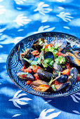 Mussels in tomato sauce with cilantro