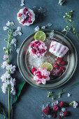 Quick raspberry and yoghurt ice cream sticks