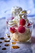 Vanilla ice cream with cream and fresh raspberries