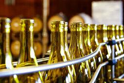 Empty wine bottles in a bottling factory