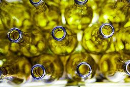 Empty bottles of wine in a bottling factory