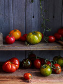 Various types of tomatoes on a wooden shelf