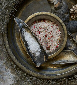 Various types of salt and clam shells arranged on spanish moss