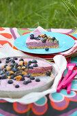Blaubeer-Buttermilch-Tarte zum Picknick