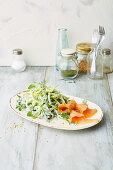 Rocket cucumber salad with smoked salmon (low carb)