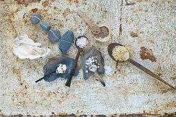 An arrangement of various different types of salt (seen from above)