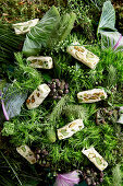 An arrangement of green shades made from vegetables, leaves and white nougat (full frame)