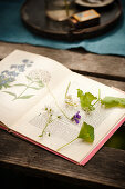 Edible Flowers and Leaves on Book