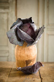 Red Cabbage on Table