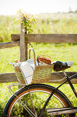 Bicycle with picnic basket at a wooden fence in the meadow