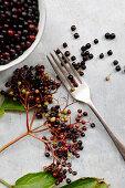 Elderberries with a fork