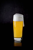 A glass of lager against a black background