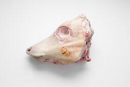 A calf's head