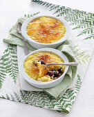 Milk rice brulée with caramelised sour cherries