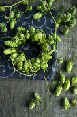 Hops on a wire wreath