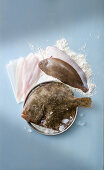 Sole, turbot and plaice fillets