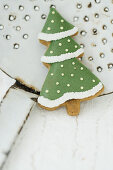 A fir tree cookie on a ladle
