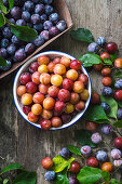 Fresh summer mirabelle plums in white bowl and blue plums on wooden surface