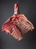 Forequarter of beef (inside)