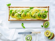 Kiwifruit Green and Gold cheesecake