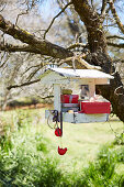 Bird feeder with small gifts and Christmas decorations