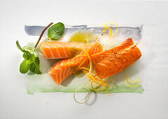 Food art: salmon (fried and raw) with orange zest and mint on a page of watercolour