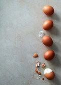 Eggs, fresh and hard boiled