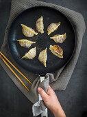 Fried gyoza (dumplings, Japan) in a pan