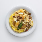 Braised stockfish with sardines, pine nuts and raisins on polenta