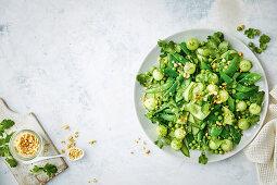 Green legume salad with melon balls