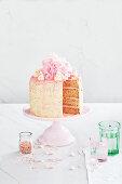 Fairy Bread Schichtkuchen, angeschnitten