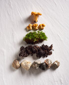 Stones, earth, moss and chanterelles arranged in a pyramid shape