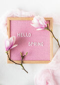 Spring greetings and magnolia flowers