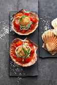Fried scallops with tomato ragout