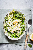A pea salad with pea shoots and egg