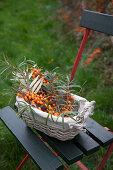 Freshly cut sea-buckthorn branches in a basket
